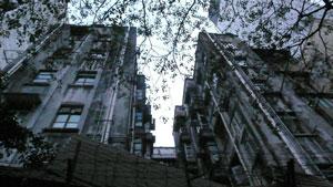 HK-city3.jpg